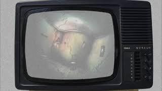 Video Pantau - Control
