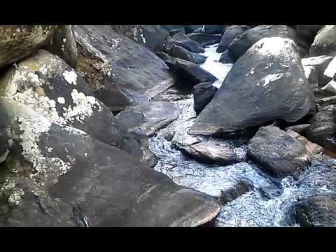 Cachoeira no Rio Gavião , no Alto Gavião em Eugenopolis .