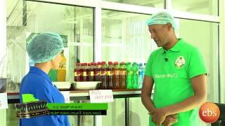 የሞሪንጋ ለስላሳ መጠጥ አመራረት እና ጠቀሜታዉ Ethio Business