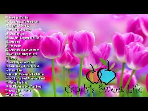 Sweet Memories Sentimental Love songs Collection Vol. 97 , Various Artist