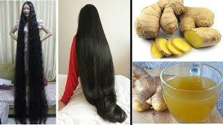 Ginger for Extreme Hair Growth, Stop Hair Loss / How to Grow Long and Thicken Hair with Ginger
