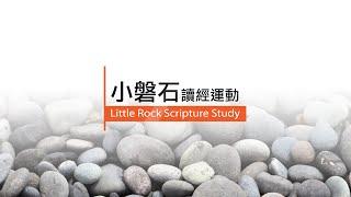 愛 ● 常傳 - 小磐石讀經運動 Little Rock Scripture Study