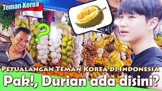 Video Teman korea(한국친구) - 두리안을 찾아라! where is the durian here? - Petualangan di indoneisa Ep.2 MP3, 3GP, MP4, WEBM, AVI, FLV Februari 2019