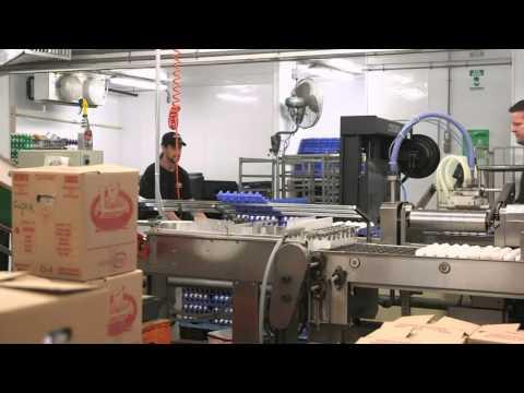 Rencontrez Marcel, un producteur d'œufs.