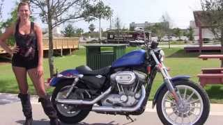 1. Used 2007 Harley Davidson Iron 883 Motorcycles for sale in Navarre FL