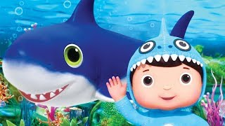 Video Little Baby Bum LIVE - Nursery Rhymes and Kids Songs - Songs For Kids LIVE - Youtube Kids MP3, 3GP, MP4, WEBM, AVI, FLV Juni 2019