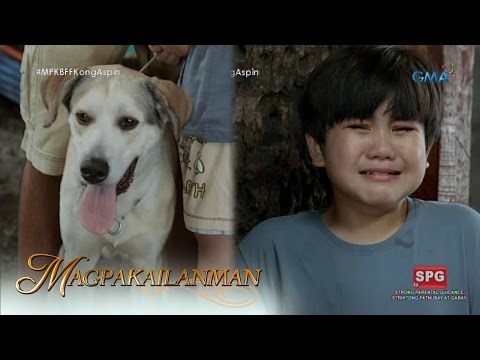 Video Magpakailanman: When mom hates your dog download in MP3, 3GP, MP4, WEBM, AVI, FLV January 2017