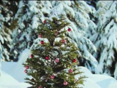 Ntuj No Tuaj Lawm (The Original Song/Classic) (видео)