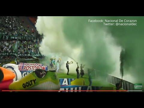 LOS DEL SUR - Nacional 2 - equidad 0  Liga Águila II 2015 [HD] - Los del Sur - Atlético Nacional