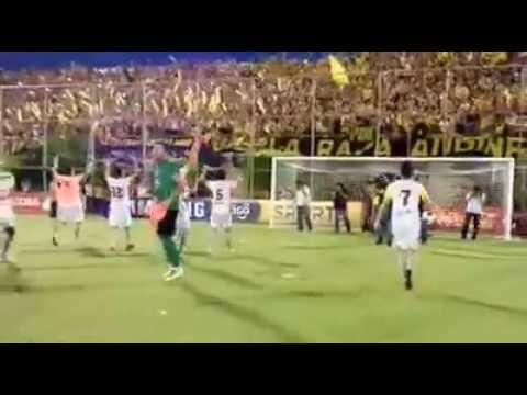 Dale CAMPEÓN, Dale CAMPEÓN !!! Festejo de la Hinchada Aurinegra - La Raza Aurinegra - Guaraní de Asunción