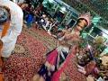 Shokat ali baude Krishna Teri murli ta