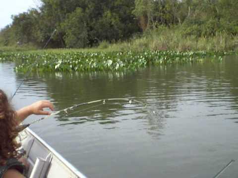 pescaria tucunaré terra rica sany