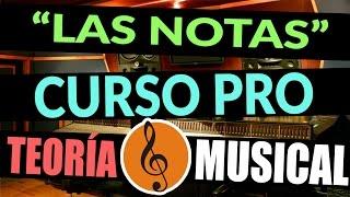 TEORÍA MUSICAL  Nivel Básico  Capítulo 1  Las notas