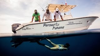 Bluewater Spearfishing in Panama