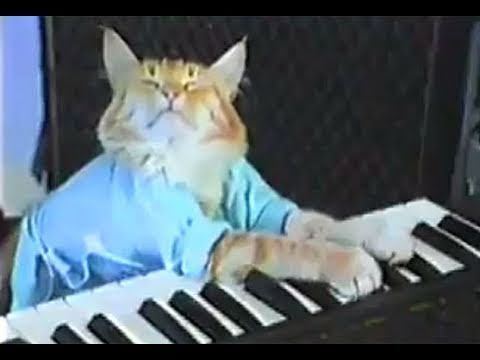 keyboard - WATCH: Keyboard Cat meets Grumpy Cat! http://www.youtube.com/watch?v=QUSuTEPFX_U http://www.facebook.com/thekeyboardcat http://www.twitter.com/thekeyboardcat...