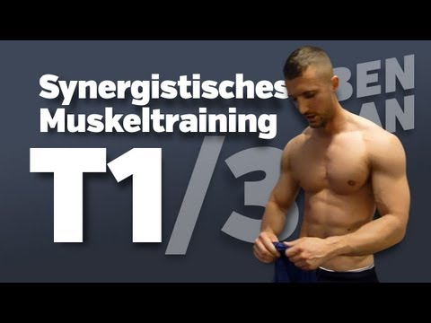 BODYBUILDING ANFÄNGER TRAININGSPLAN für Muskelaufbau: Synergistisches Muskeltraining (Tag 1/3)