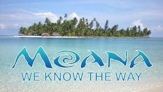 MOANA - We Know The Way (Opetaia Foa'i ) | Disney's Moana Video