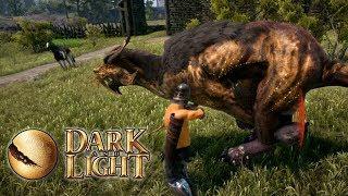 Dark and Light | #5 HARD TIMES