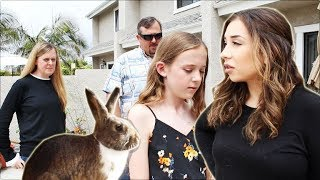HOUSE RABBIT MAKEOVER | EPISODE 1 by Lennon The Bunny