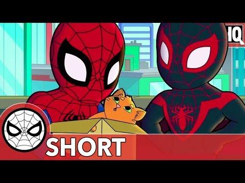 Spidey & Miles Aren't Kitten Around! | Marvel Super Hero Adventures - That Drone Cat | SHORT