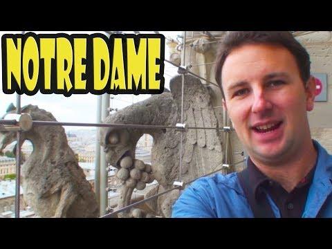 Majestic Gargolyes of Notre Dame de Paris France