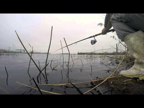 плотва на поплавок в марте видео