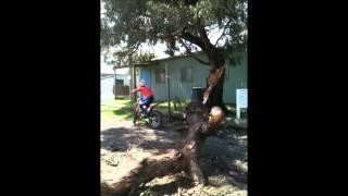 8. Riding Over a Fallen Tree - Beta Evo 125