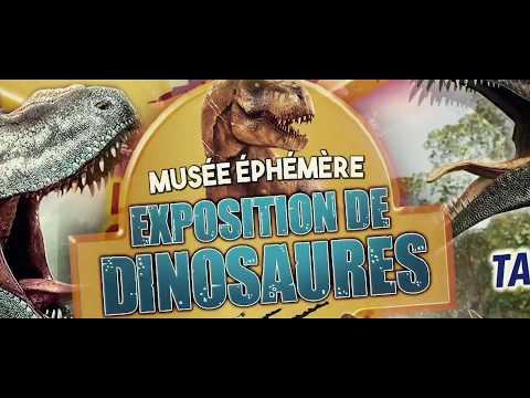 Le Musée Ephémère: Tournée 2021