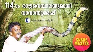 Video OMG! 14 feet long 114th King Cobra rescued | Vava Suresh | Snake Master | Latest episode MP3, 3GP, MP4, WEBM, AVI, FLV Desember 2018