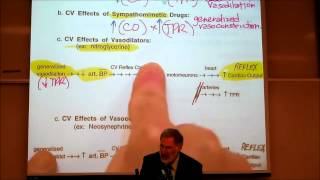 AUTONOMIC DRUGS; PART 2; Epinephrine&Dosage Calculations By Professor Fink