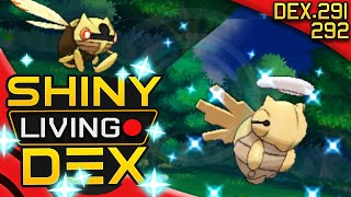 SHINY SHEDINJA AND NINJASK!! Nincada Live Reaction! Quest For Shiny Living Dex #291 #292 by aDrive