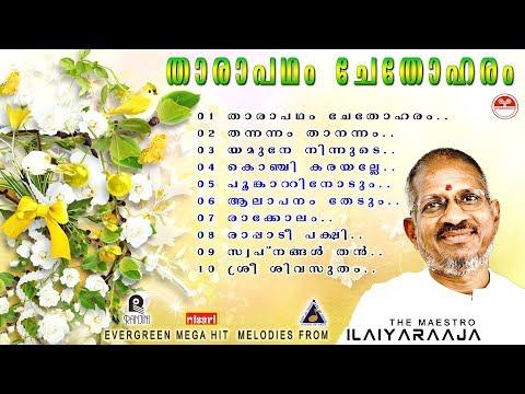 Video Tharapadham Chethoharam |Ilaiyaraaja,Dasettan,Janaki,Chitra Evergreen super hit songs download in MP3, 3GP, MP4, WEBM, AVI, FLV January 2017