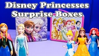 FROZEN Disney Frozen Elsa Vs  Disney Princess Surprise Boxes A Frozen Surprise Egg Video