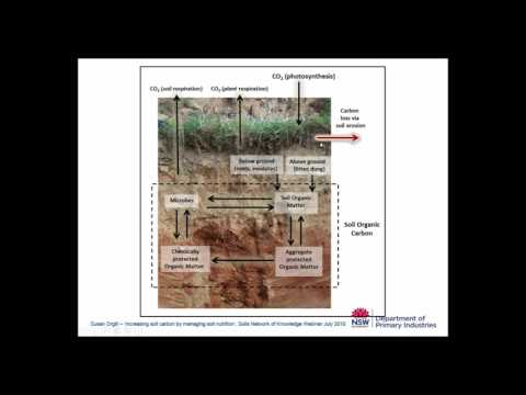 Increasing soil carbon by managing soil nutrition