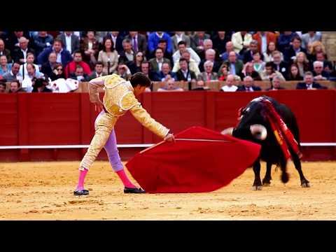 Matadors get Gored by Bulls | Spanish Bull Fighting Legends!
