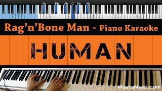 Rag'n'Bone Man - Human - LOWER Key (Piano Karaoke / Sing Along)