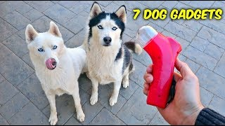 Video 7 Dog Gadgets Put to the Test - Part 6 MP3, 3GP, MP4, WEBM, AVI, FLV Maret 2018