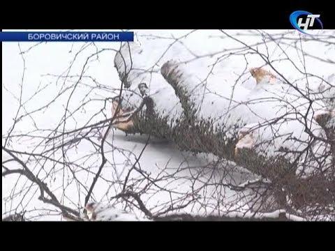 По факту гибели ребенка в Боровичском районе возбуждено уголовное дело