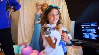 Sarah's Birthday Kitten Surprise!