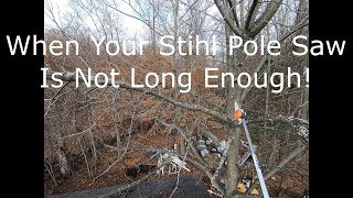 6. When Your Stihl Pole Saw Is Not Long Enough!