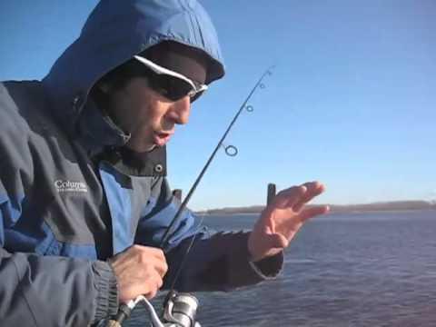 La technique de pêche au doré à la dandinette hivernale