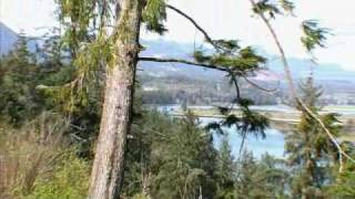 Here's a look at the Beautiful and quaint town of Nehalem, Oregon. Close to the beaches, Peaceful riverfront, wildlife galore!, and fishing and boating and ...