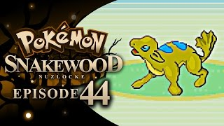 Pokémon Snakewood Nuzlocke w/ TheKingNappy! - Ep 44 WE R LOST by King Nappy