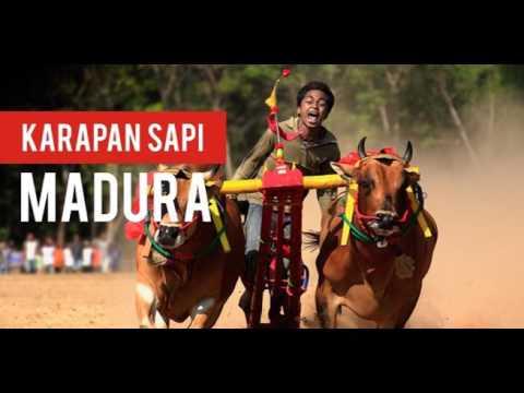 Kerraban Sape [Versi Original] - Lagu Daerah Madura - Jawa Timur - Indonesia