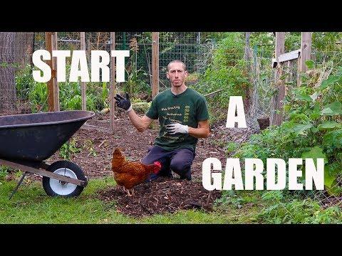 , title : 'How to Start A Food Forest Garden! Organic Gardening'