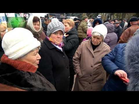 Киевляне едят с помоек. Надо было выше скакать на Майдане - DomaVideo.Ru