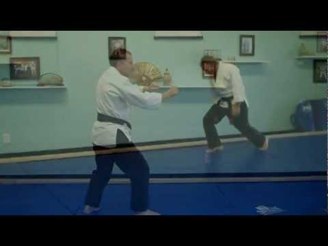 Jujutsu Shoden Excerpts