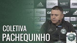 Coletiva - Pachequinho