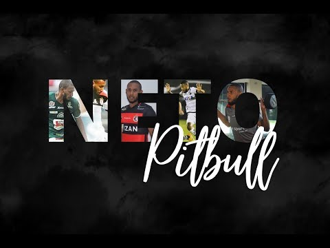 DVD NETO PITBULL