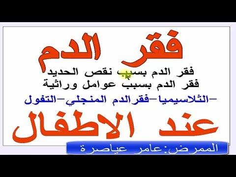 https://www.youtube.com/embed/J56DnC__Cm8